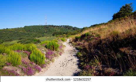 Camino de Santiago (Spain) - Along the way of St.James in the Bierzo landscape