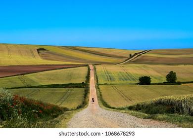 camino de santiago spain  Camino de Frances  On the road