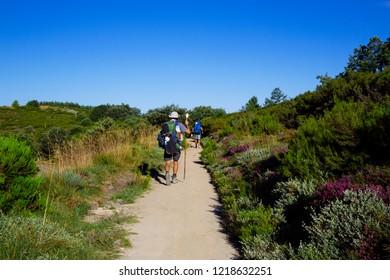 Camino de Santiago (Spain) - Pilgrims walking along the way of St.James, in the Bierzo green landscape