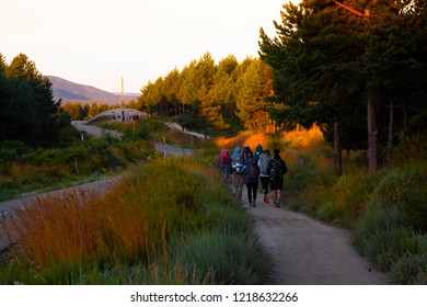 Camino de Santiago (Spain) - Pilgrims in the sunshine walking along the way of St.James