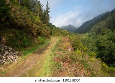 Camino de Santiago trail between Salas and Tineo, Asturias, Spain