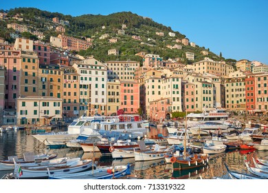 Camogli typical village with colorful houses and small harbor in Italy, Liguria in a sunny day