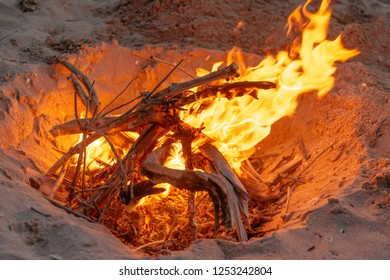 Camp bonfire on sand beach, no people.