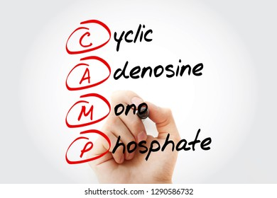 CAMP - Cyclic Adenosine MonoPhosphate acronym with marker, concept background