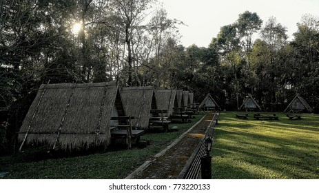 camp at Doi Phu Kha National Park THAILAND