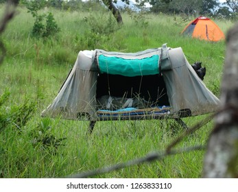 camp in florest