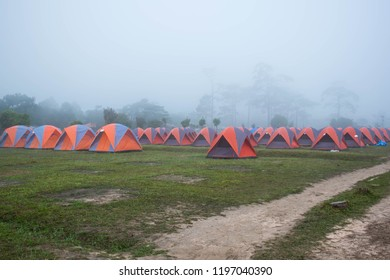 Camp in foggy on the morning at Phu Kradueng national park, Loei Thailand.
