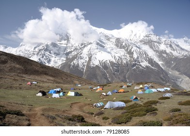 """Camp in the mountains of mushroom """"Ophiocordyceps sinensis"""" pickers Nepali"""