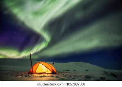 Camp on the Kungsleden Wintertrail in northern Sweden under Northern Lights