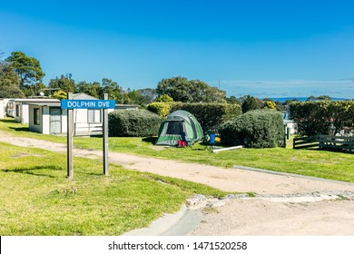 Camp site in the forest, campground in the Tasmania, Australia