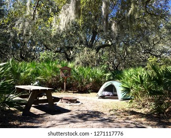 Camp site on Cumberland Island, Georgia, with Spanish moss, tent, and picnic table