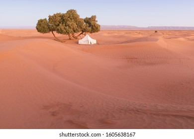 Camp with tent in the desert among sandy dunes. Sunny day in the Sahara during a sand storm in Morocco Picturesque background nature concept
