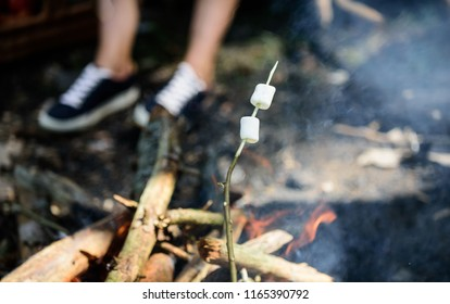 Camp tradition. Marshmallows on stick with bonfire and smoke on background. Holding marshmallow on stick. How to roast marshmallows. Roasty, toasty marshmallows such quintessential taste of picnic.