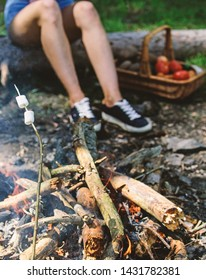 Camp tradition. Marshmallows on stick with bonfire and smoke on background. Holding marshmallow on stick. Roasty, toasty marshmallows such quintessential taste of picnic. How to roast marshmallows.