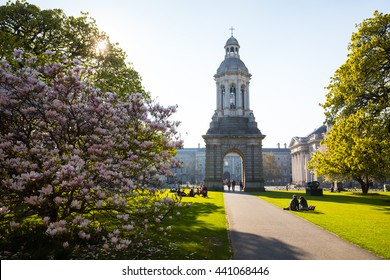 The campanile in Dublin, Ireland