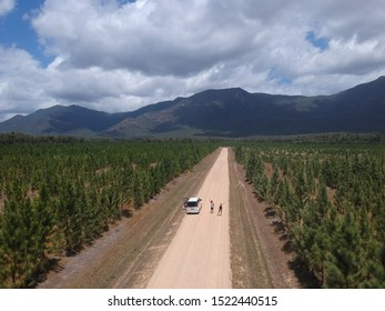 campervan on a straight road between a forest and mountains