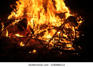 Campfire bonfire flames with burning wood at night on the black background