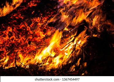 Campfire close-up in nature at night