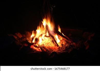 Campfire in the dark. Night campfire.