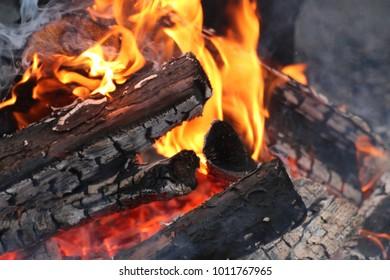 campfire flames fire wood