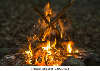 Campfire made out of collected dead branches burning in the forest.