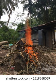 Campfire in rainy season in the garden. Kindle a fire with the Tamarind tree branch.