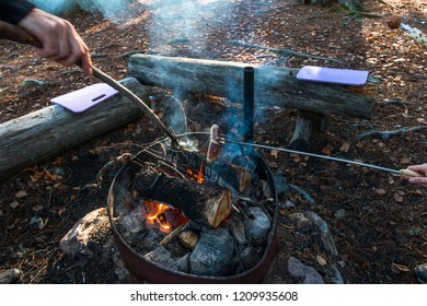 Campfires in the forest
