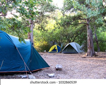 campground in the forest.