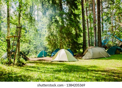 campground on the edge of the forest