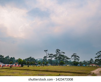 Campground on Phu Kradueng mountain national park in Loei City Thailand.Phu Kradueng mountain national park the famous Travel destination