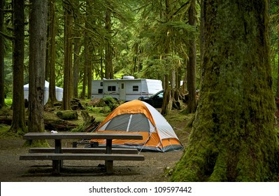 The Campground - Small Orange Tent and Travel Trailer in the Background. Deep Forest Campground. Outdoor Lifestyle Photo Collection.