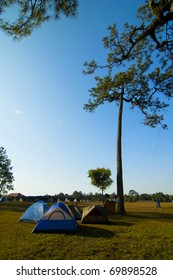 Campground tents in pine forest