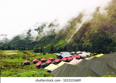 Camping in the beautiful valley of flowers in Nanda Devi biosphere national park in Uttarakhand, India. Beautiful & serene nature and waterfalls, Greenery. Misty and foggy weather.