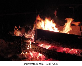 Camping fire in the night with wood in nature