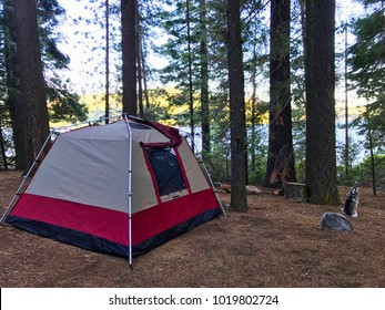 Camping in the forest near the lake. Lifestyle