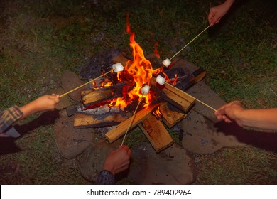 Camping grill marshmallow. hands holding skewers with marshmallows around the fire