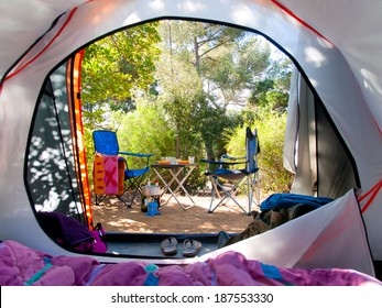 Camping in the middle of the woods, shot from inside the tent