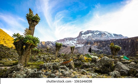 Camping on mount Kilimanjaro in tents to see the glaciers, Africa