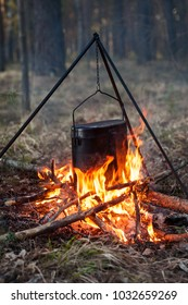 Camping pot on a fire in the woods