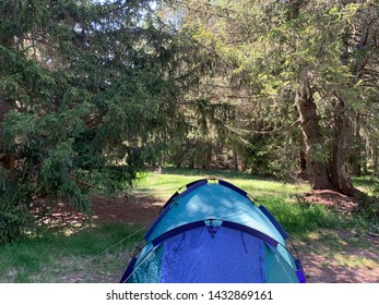 Camping site at the forest in France
