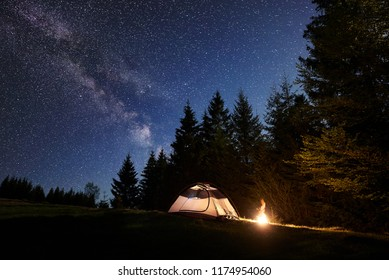Camping site at night. Lit by brightly burning bonfire small tourist tent on forest clearing under clear dark blue starry sky on high pine trees background. Beauty of nature and tourism concept.