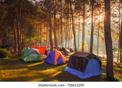 Camping and tent under the pine forest in sunrise at Pang-ung, pine forest park , Mae Hong Son, North of Thailand.