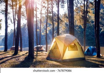 Camping und Zelt unter dem Pinienwald nahe dem See mit schönem Sonnenlicht am Morgen