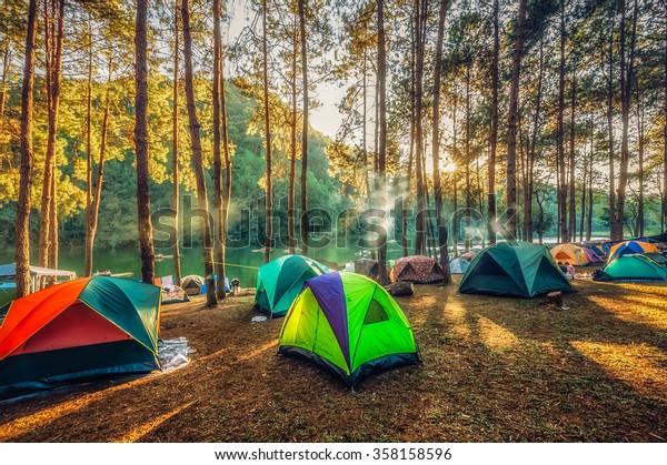 Camping y tienda bajo el bosque de pinos al atardecer al norte de Tailandia