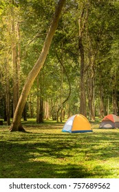 camping and tents ,tents set up in campsite, outdoor exercise concept.