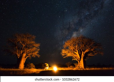 Camping under the milky way between baobab's