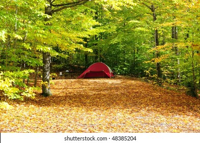 Camping in the White Mountains on a carpet of fall foliage