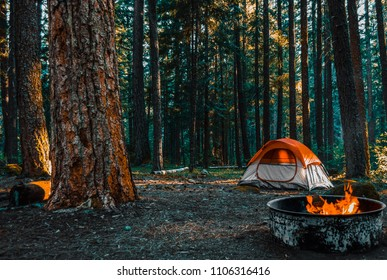 Camping in the the woods of Shenandoah Mountain with a bonfire