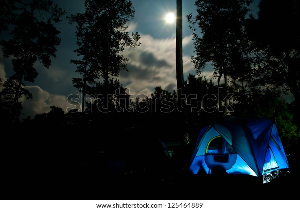 Camping in the woods under the moonlight