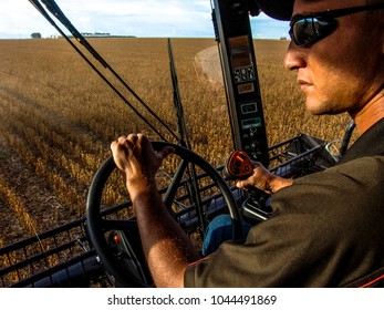Campo Verde, Mato Grosso, Brazil - March 01, 2008: Farmer driving Combine in mass soybean harvesting at a farm in Campo Verde, Mato Grosso